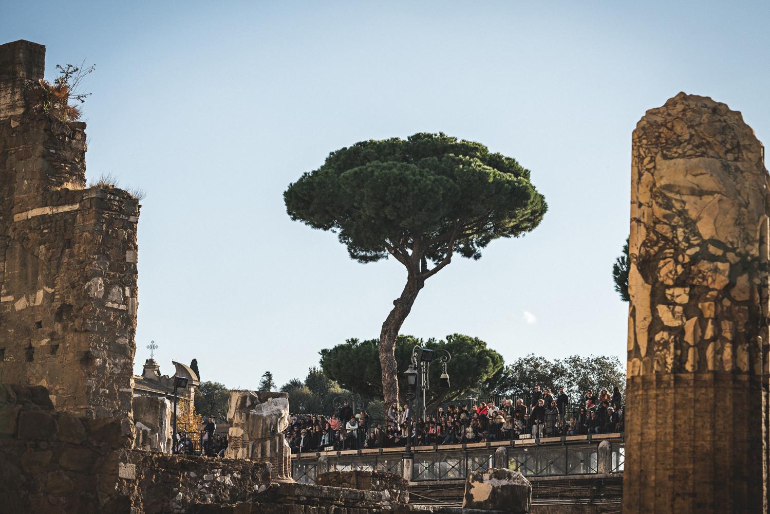 Photo by www.vittoriolafata.it